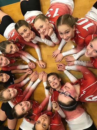 2019 Volleyball-2.jpg