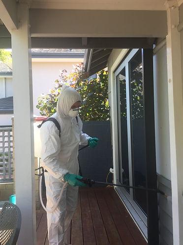 djl_services_disinfectant_spraying.JPG