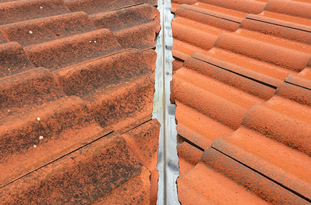 Roof cleaning maintenance tips to help you save money!
