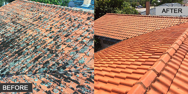 High Pressure Roof Cleaning Perth