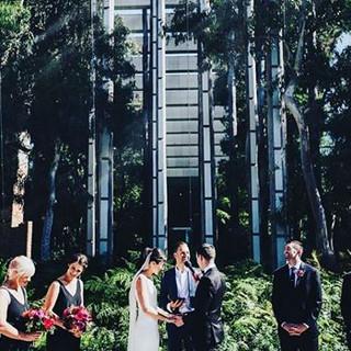 melbourne celebrant benn stone museum weddings carlton gardens.jpg