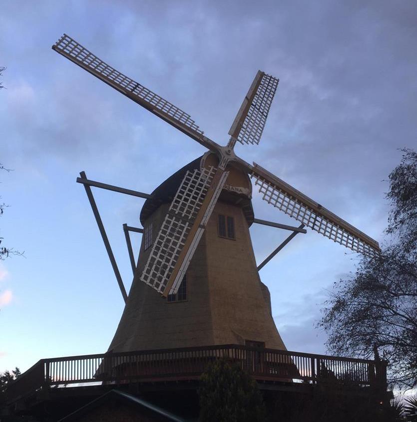fun windmill weddings melbourne