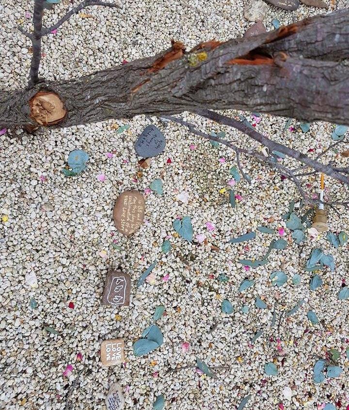 spiritual celebrants melbourne stone circle