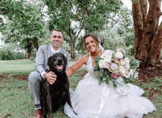 Bring A Fur Baby To Your Wedding