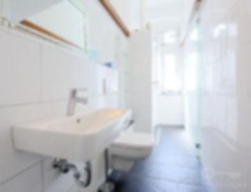 Carpenter Home Renovation Bathroom in Berlin