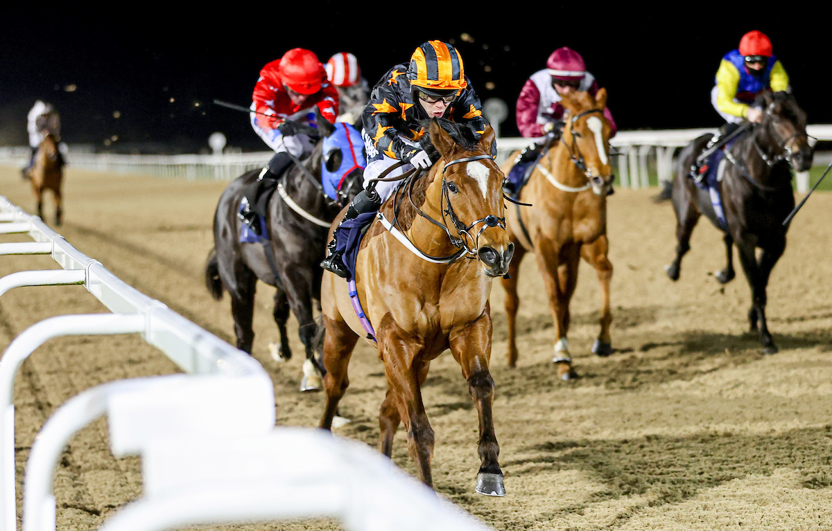 Elusive Treat winning at Newcastle