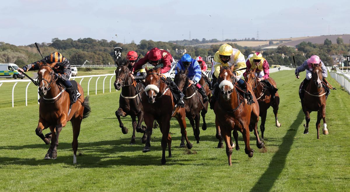 Vivacious Boy winning at Musselburgh