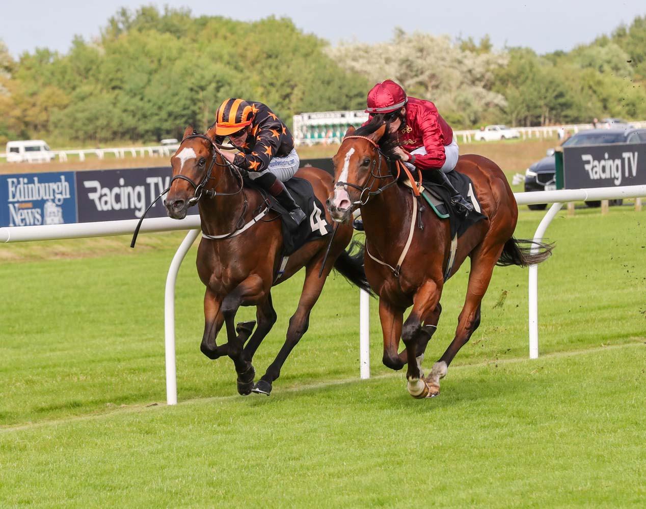 Club Horse 2