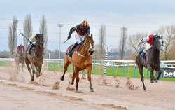 Crownthorpe in winning action at Southwell