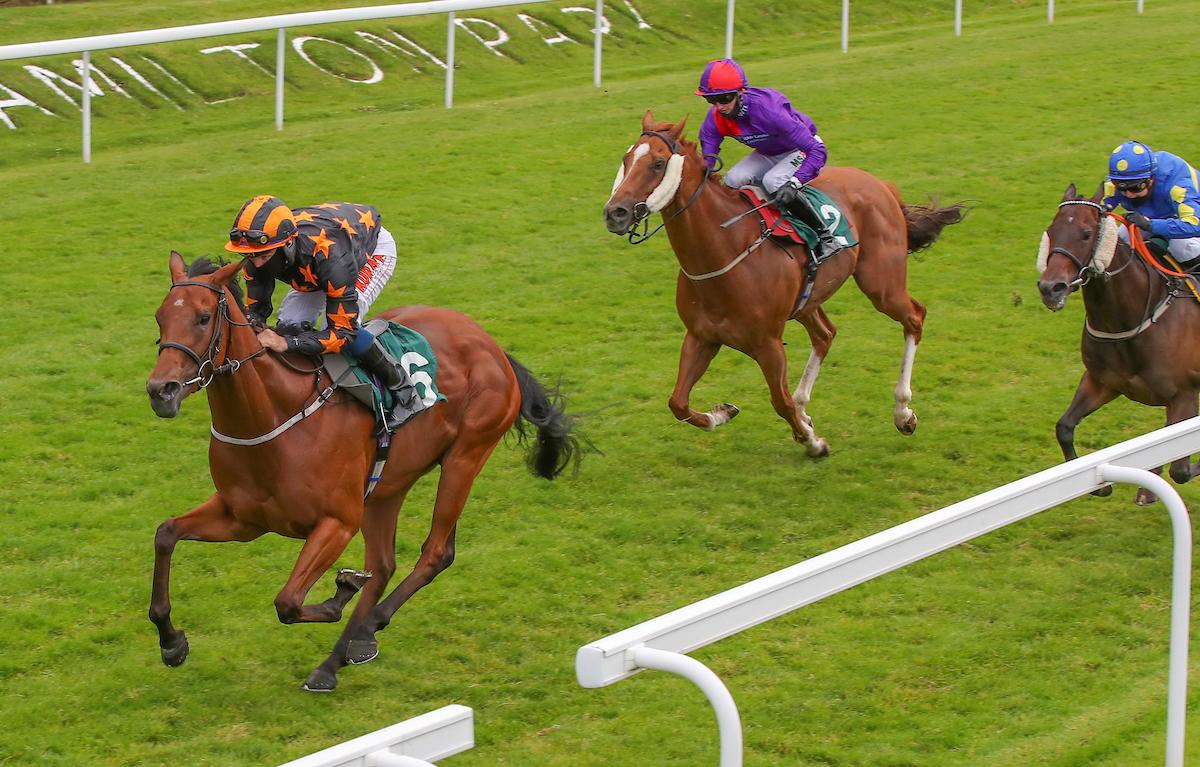 Lady Celia winning at Hamilton