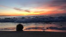 Natural Artifacts Tumbling Along Beach