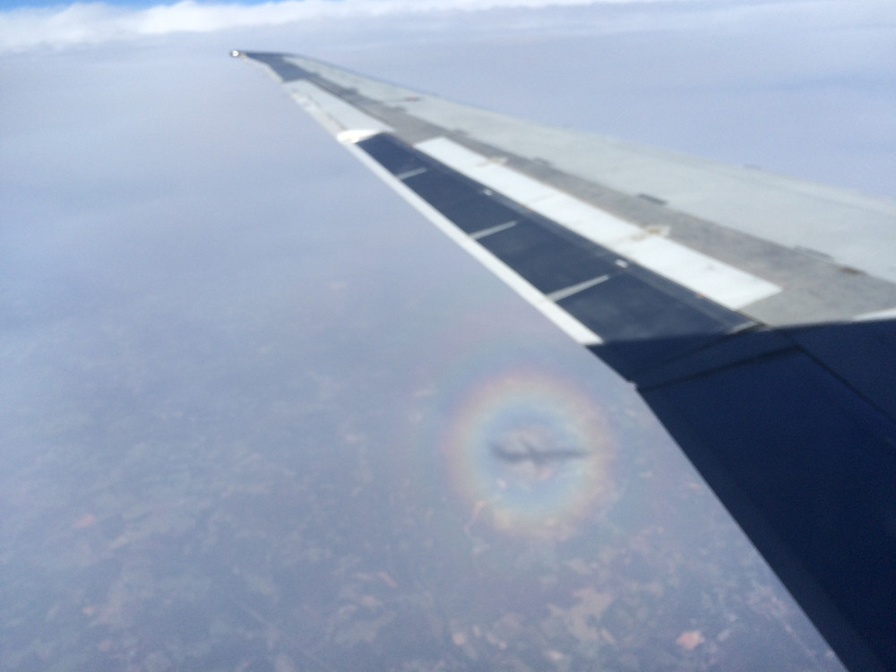 Airplane shadow within circular rainbow