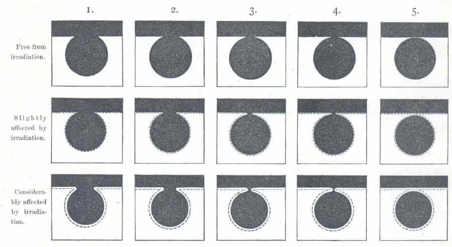 mercury-irradiation.jpg