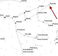 Ursa-Major-Muscida-arrow.png