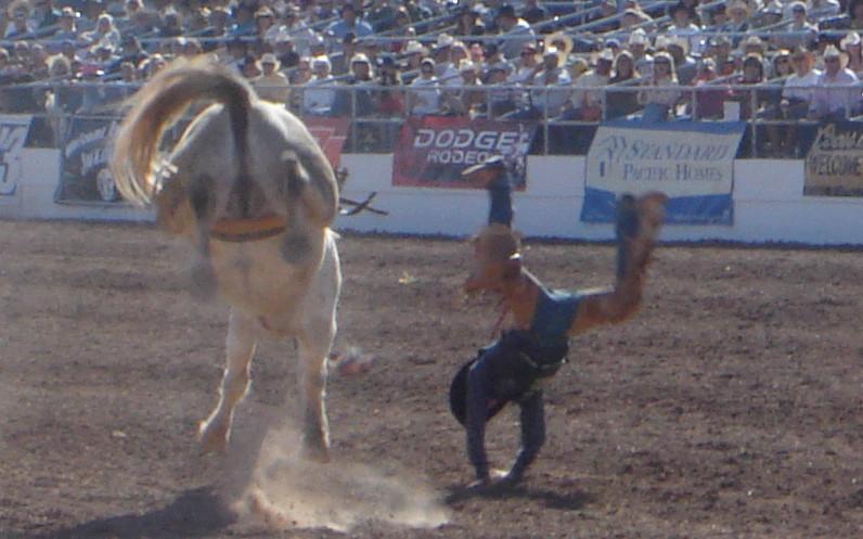 rodeo-bueter.JPG