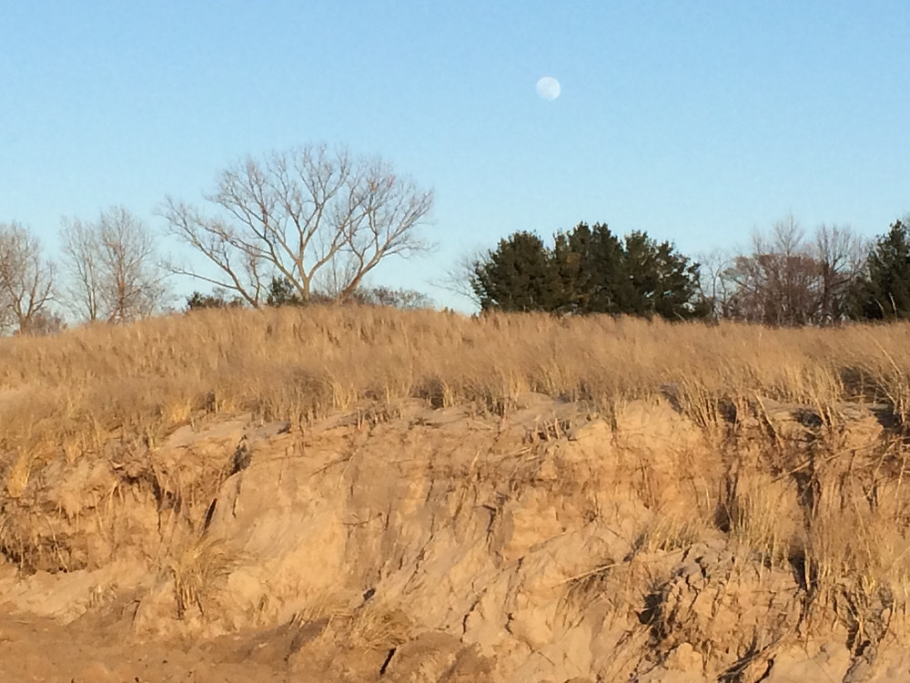 Moonrise over the dune