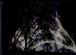 December Solstice Wetlands Solargraphs
