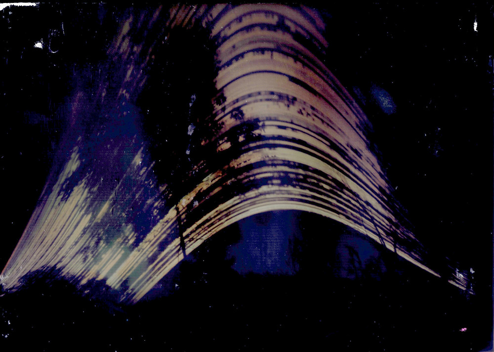 Solargraph shows trees in foreground of solar arcs.