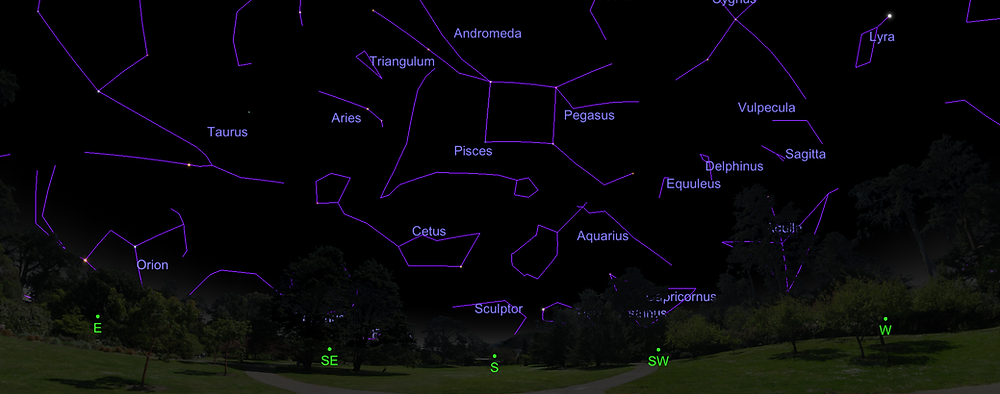 Southern constellations in November.
