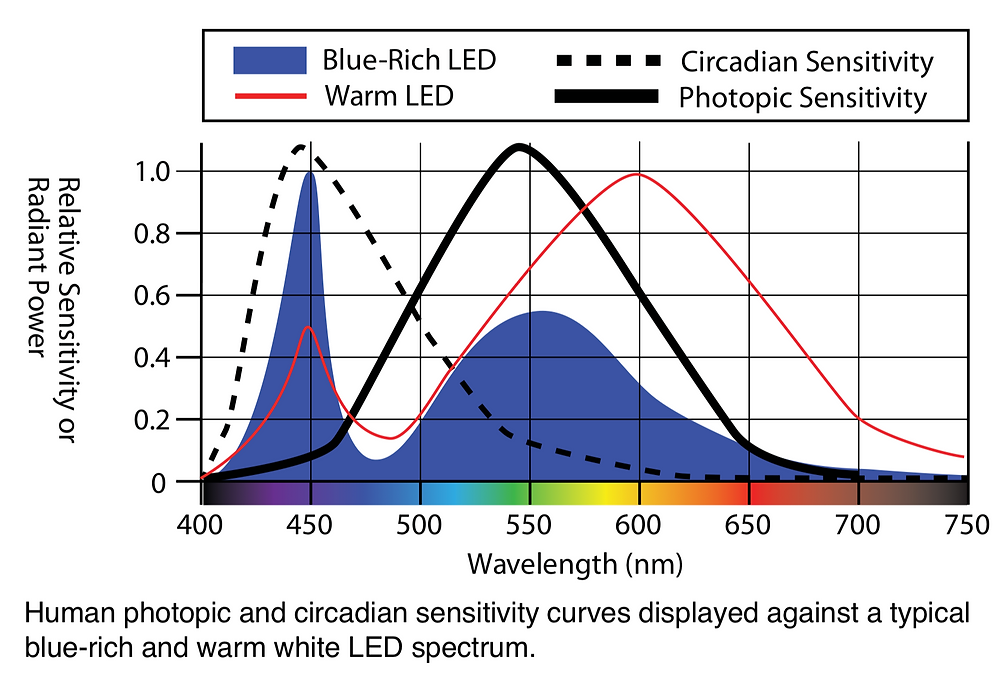Circadian system most sensitive at wavelength of blue-rich LED, about 450 nanometers. Image courtesy of International Dark-Sky Association.