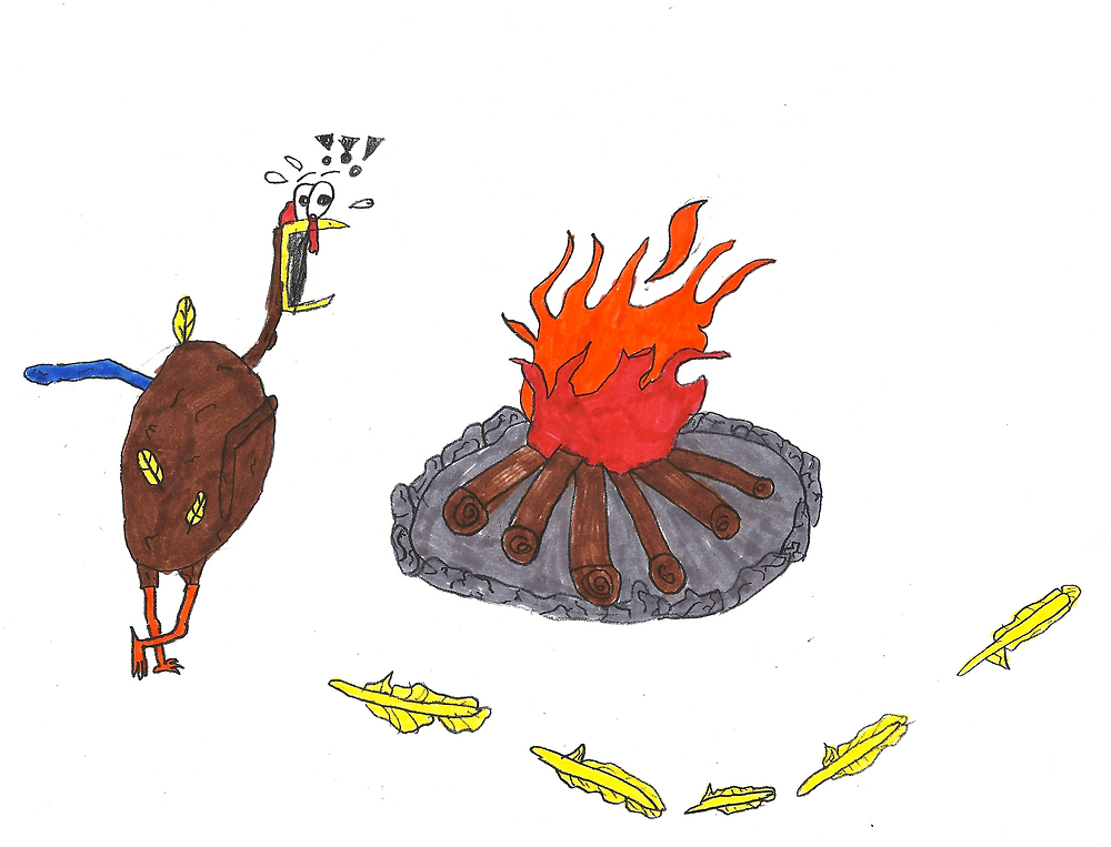 dacota-turkey-crop.png