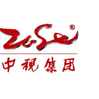 中视集团logo.jpg