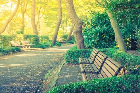 wooden-bench-park-filtered-image-process