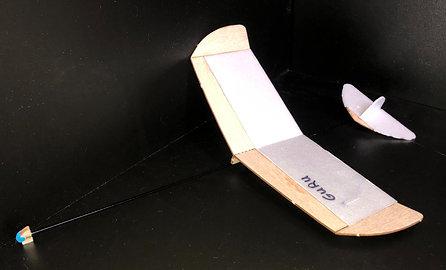 Guru Glider Kit '21