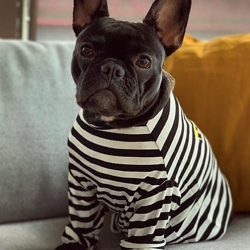 Long Sleeved Striped Petements T-Shirt