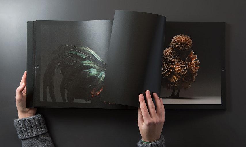 Atellani-foto-book0137.jpg