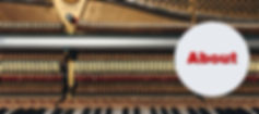 Piano tuning and Music Lessons