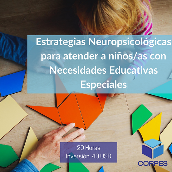 ESTRATEGIAS NEUROPSICOLÓGICAS PARA ATENCIÓN A NIÑOS/AS CON NEE
