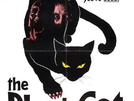 El Gato Nero Weirdo!
