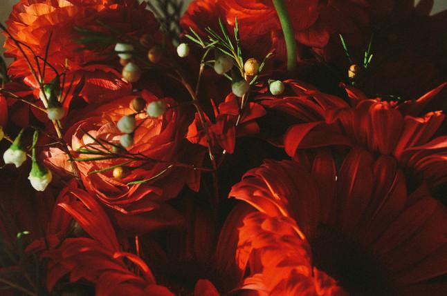 ・臘梅-小牡丹-太陽花・