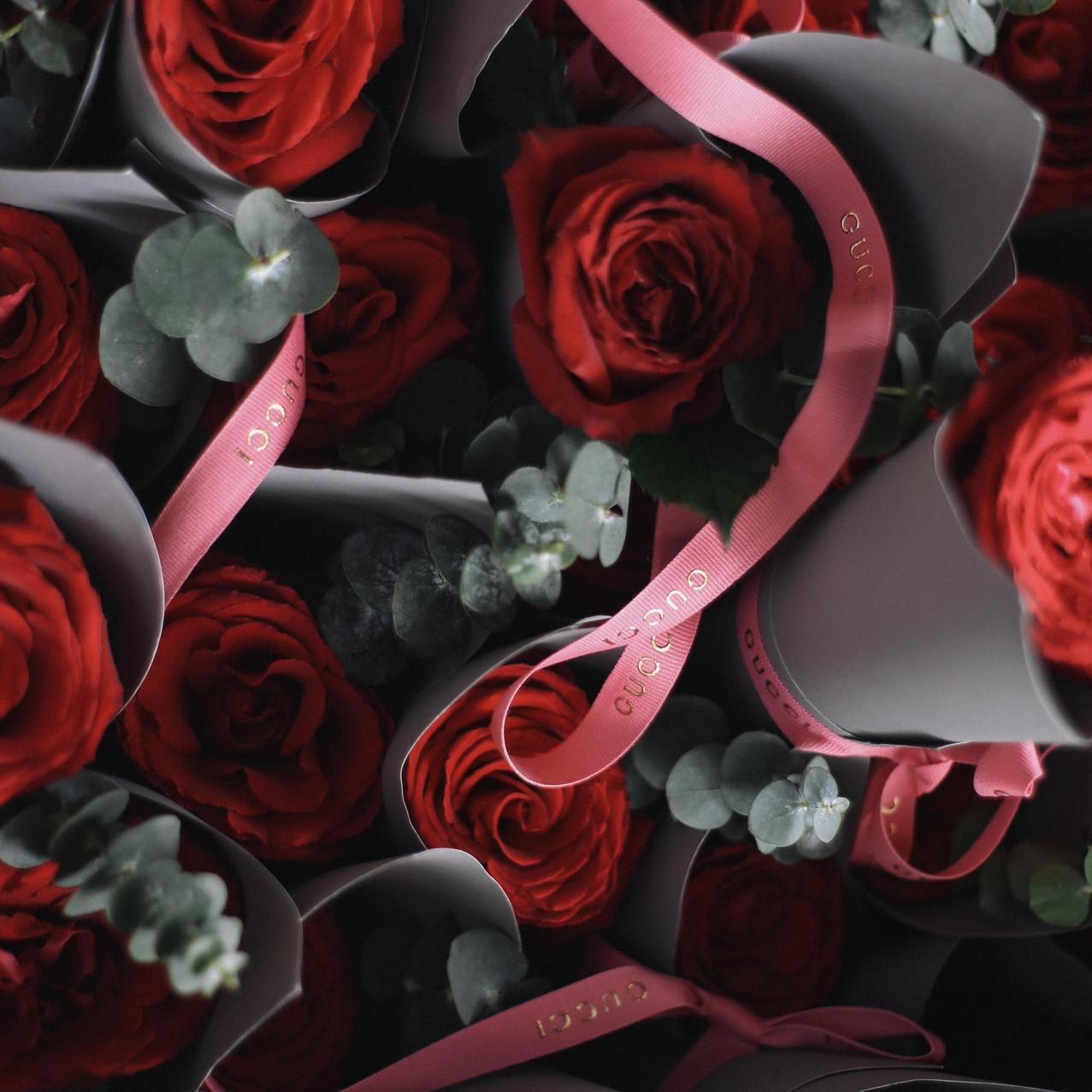 """""""Gucci - Valentine's Day"""""""