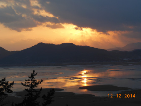 Suncheon Ecological Bay