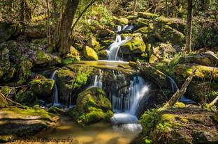 Falls on Tamassee Creek