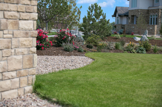 Plantings and pathways