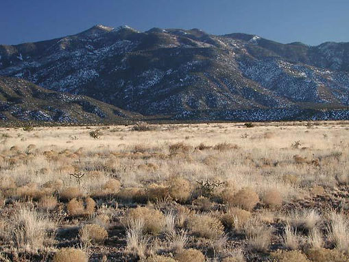 New Mexico Land Sale
