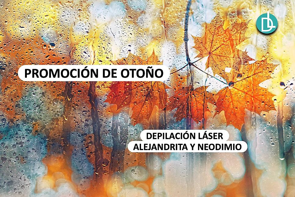 CABECERA WEB.jpg