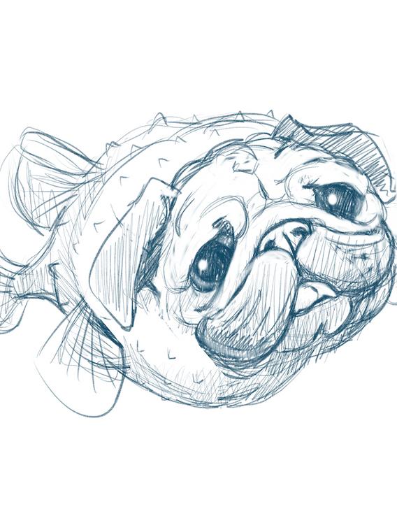 Puggerfish1-web.png