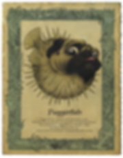 Puggerfish copy.png