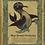 Thumbnail: Blue-finned Merbooby Art Print