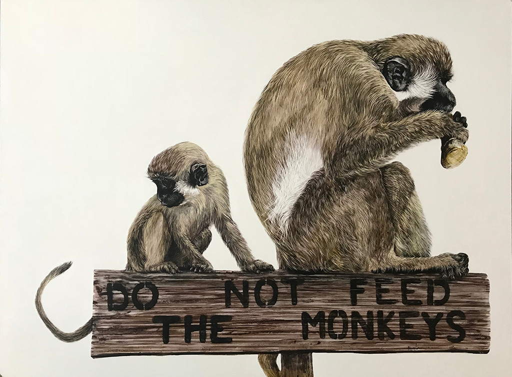 "Do Not Feed The Monkeys (18x24"")"