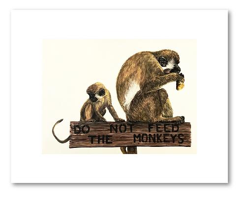 """Do not feed the monkeys""- 8x10"" Print"