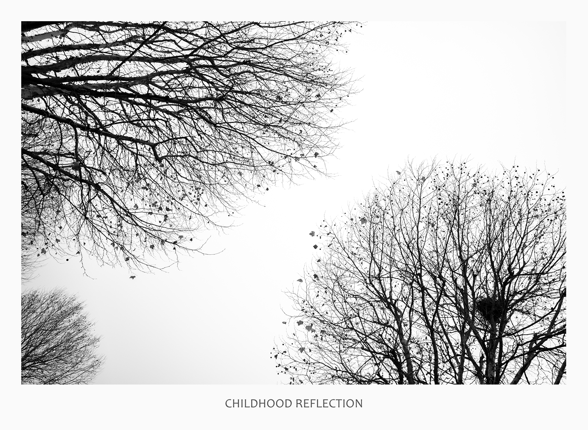 03 43677 - Childhood Reflection