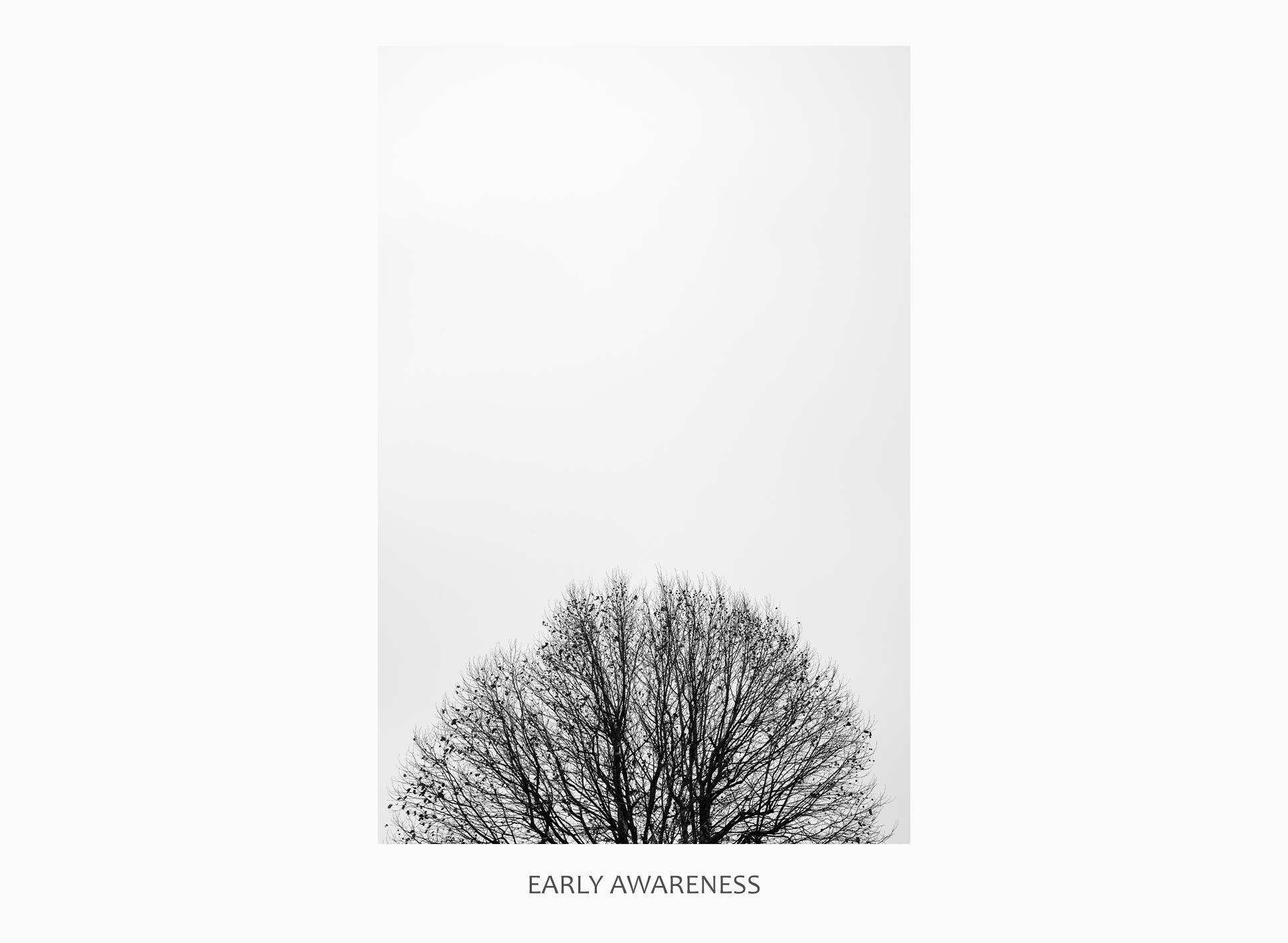 08 43686 - Early Awareness
