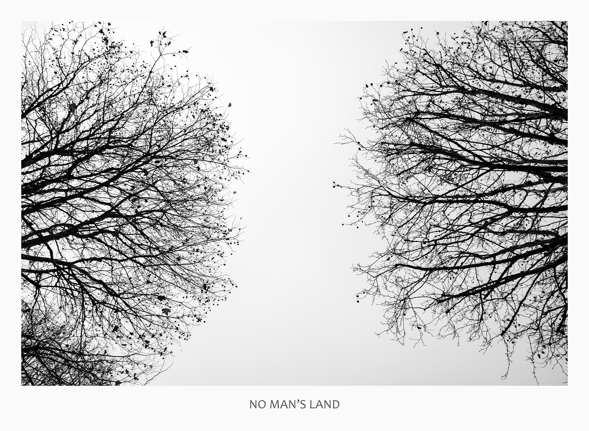 10 43690 - No Mans Land