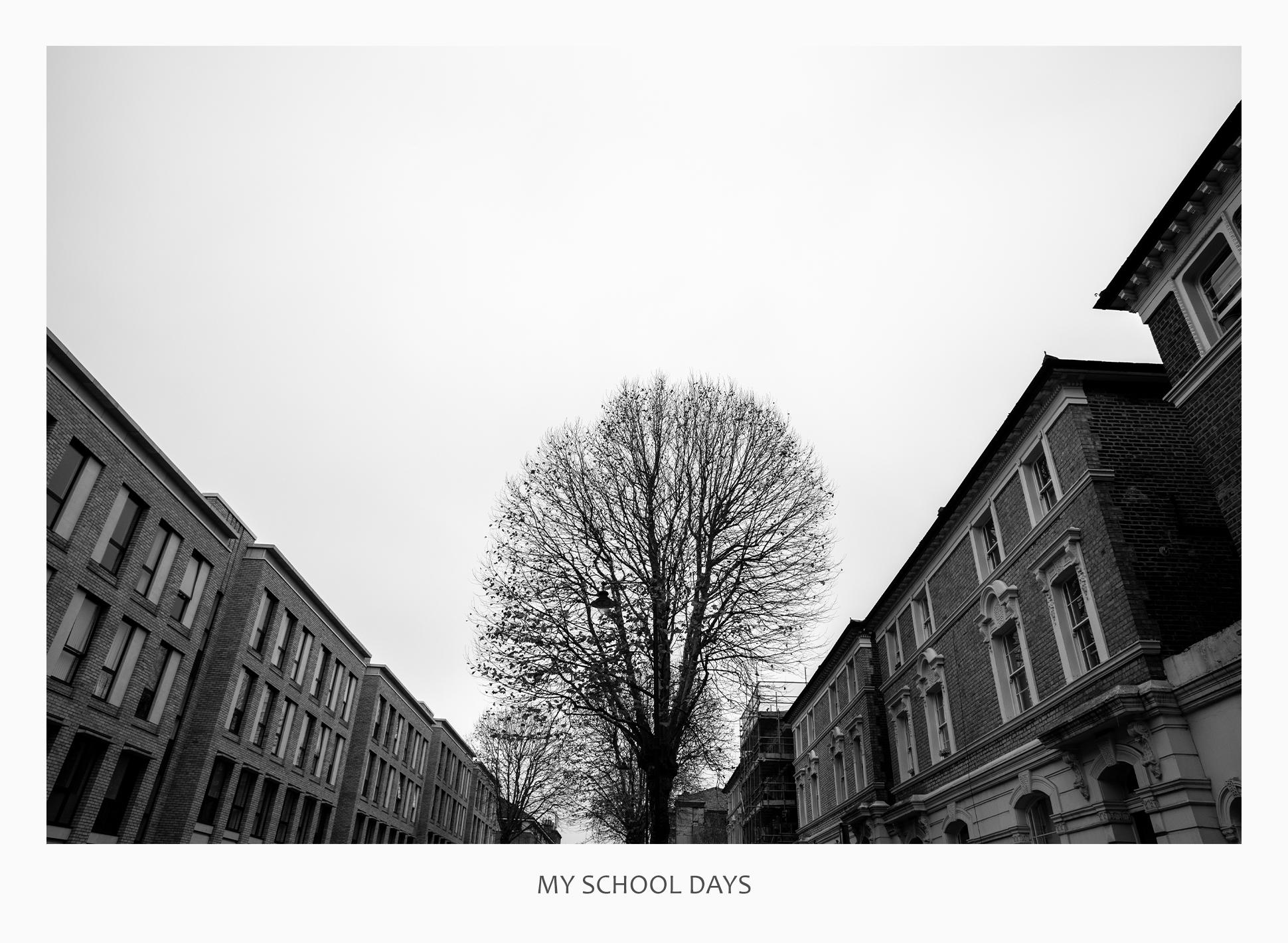 05 43681 - My School Days