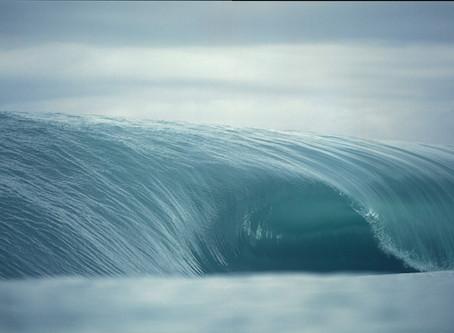 The Surf Pilgrim 本日のオープニングナイト